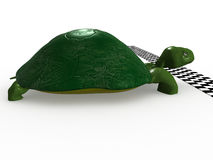 Turtle near the finish line №3 Stock Photography