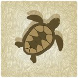 Turtle old background Stock Photos