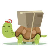 Turtle with a package. Cartoon Turtle with a package, slow delivery Royalty Free Stock Images