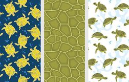 Turtle patterns. Turtle pattern. Seamless vector pattern set. Cute funny turtles colorful backgrounds Royalty Free Stock Photo