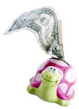 Turtle piggy bank with one dollar note Stock Photography