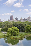Turtle pond in Central Park. People enjoying the summer at the turtle pond in Central Park, NYC Stock Photo
