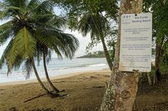 Turtle Protection measures, Tobago Stock Photography
