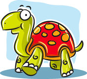 Turtle with Red Shell Stock Photography