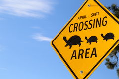 Turtle Rescue holidays- Turtle crossing sign Stock Photography