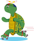 Turtle on Roller Skate Stock Photography