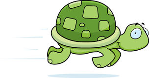 Turtle Running Stock Photo