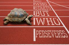 Turtle running athletic track motivational quote. Turtle running athletic red track motivational quote Stock Images