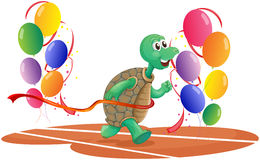 A turtle running with colorful balloons Royalty Free Stock Photography
