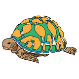 Turtle sea icon cartoon design abstract illustration animal Royalty Free Stock Photography