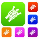 Turtle set collection. Turtle set icon in different colors isolated vector illustration. Premium collection Stock Photo