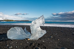 Turtle shaped ice block at Jokulsarlon Royalty Free Stock Photo