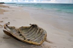 Turtle Shell. At caribbean beach, Cayo Largo/Cuba royalty free stock photography
