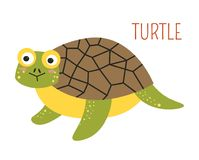 Turtle with shell cartoon childish book character. Wild amphibian animal with house on back and hue eyes on curious face. Creature that lives on land and in royalty free illustration