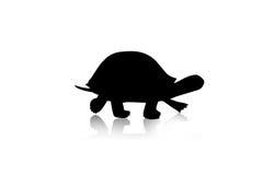 Turtle silhouette. Turtle black silhouette walking, illustration Royalty Free Stock Image