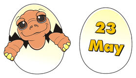 Turtle sit on egg near the egg. Baby turtle sit on egg next tot he egg with date 23 may Stock Photos