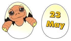 Turtle sit on egg near the egg Stock Photos