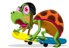 Turtle with skateboard Royalty Free Stock Photos