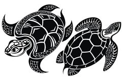 Turtle. Tattoo design Royalty Free Stock Image
