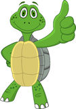 Turtle with thumb up Stock Images
