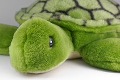 Turtle Toy Stock Image