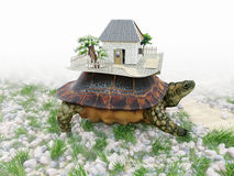 Turtle with toy house from paper real estate business concept Stock Photo