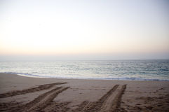 Turtle tracks Royalty Free Stock Images