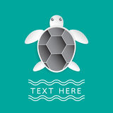 Turtle on turquoise color background. Paper art style.Vector illustration Stock Photos