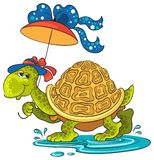 Turtle with an umbrella Royalty Free Stock Photography