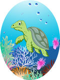 Turtle in underwater Stock Image