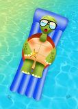 Turtle on vacation Stock Image