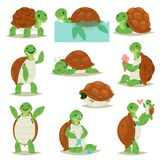 Turtle vector cartoon seaturtle character swimming in sea and sleeping tortoise in tortoise-shell illustration set of. Turtle vector cartoon seaturtle character Stock Photo