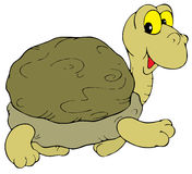 Turtle (vector clip-art) Stock Photography