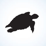 Turtle. Vector drawing Royalty Free Stock Photography