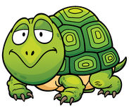 Turtle. Vector illustration of Cartoon turtle Royalty Free Stock Photo