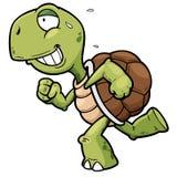 Turtle. Vector illustration of Cartoon turtle running