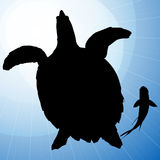 Turtle Vector Silhouettes with Fish. On Blue Background Royalty Free Stock Images