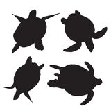 Turtle vector silhouettes Royalty Free Stock Images