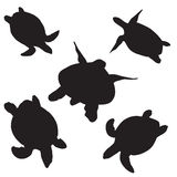 Turtle vector silhouettes Stock Images