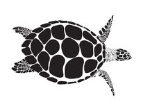 Turtle vector symbol Stock Images