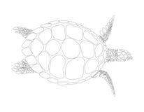 Turtle vector symbol Royalty Free Stock Photo