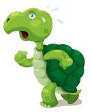 Turtle walking Stock Image