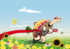 The turtle win in run competition. The quickly turtle win in run competition. Vector Stock Photography