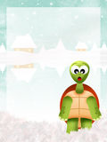 Turtle in winter Stock Photography