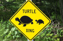 Turtle xing. Sign seen by the road Stock Image