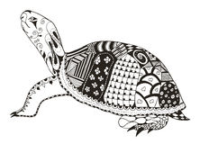 Turtle zentangle stylized. vector, illustration, freehand pencil vector illustration