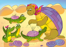 Turtle4. Tortoise tie  shells to her  crocodiles Royalty Free Stock Photography