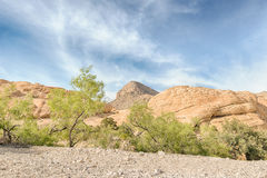 Turtlehead Peak from Calico Tanks, Red Rock Cyn, NV Royalty Free Stock Photo