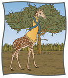 Turtleneck Giraffe. A giraffe ready in a juanty turtleneck sweater and scarf. What does GU mean embroidered on the sweater, you ask. Giraffe University of course Royalty Free Stock Image