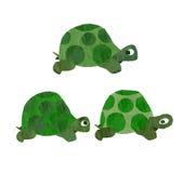 Turtles. Illustration of 3 turtles walking Stock Image